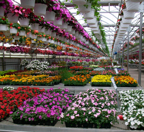 Retail Greenhouse